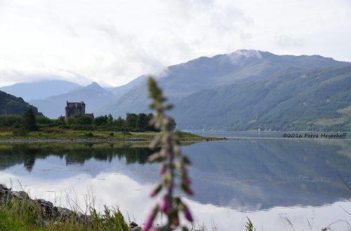 6. Juli in Dornie am Loch Duich im Westen